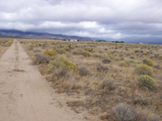 2.5 acres for sale in West Lancaster, California