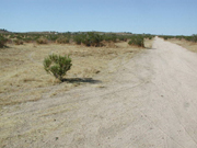 2.08 acres in Lancaster