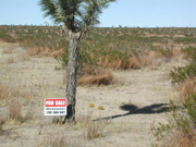 Flat land for sale in Los Angeles.